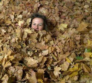 Herbstfest f